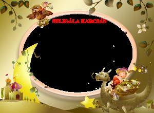 Karcsa_2014_11_17_suligála